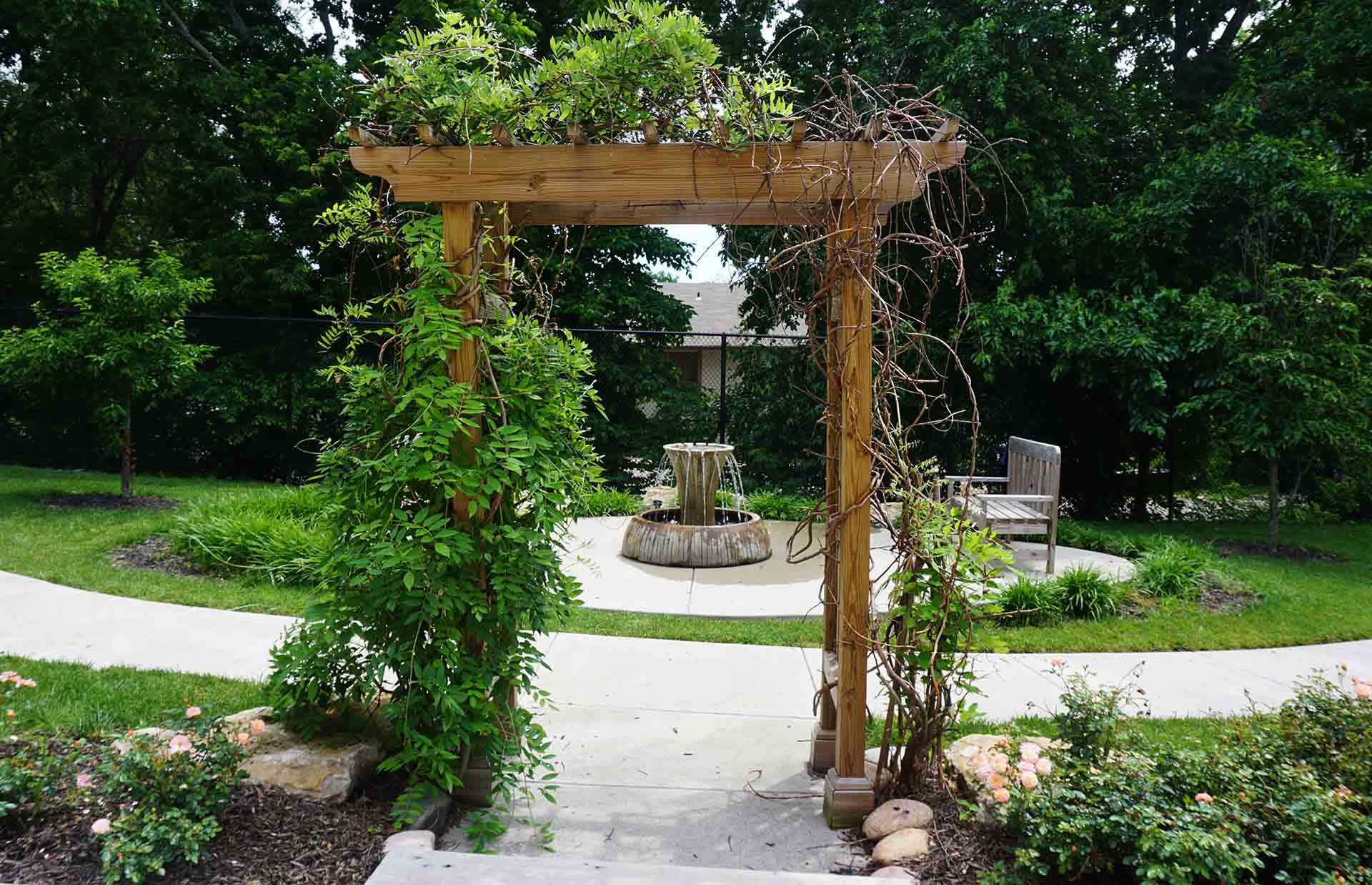 Entryway to garden covered in vines